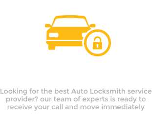 Locked Keys in Car
